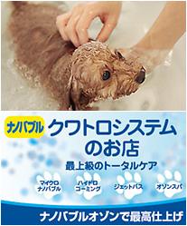 マイクロナノバブル温浴